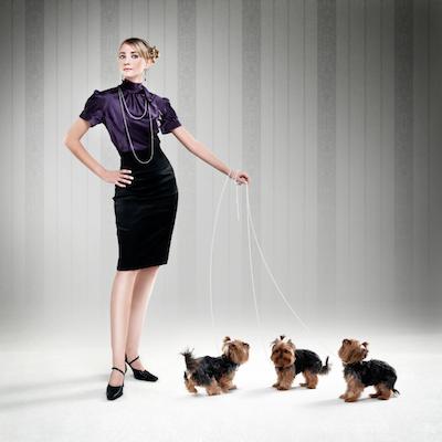 animal behaviorist